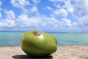 propriedades agua de coco